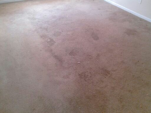 Filthy Carpet Before Cleaning in Stockbridge GA
